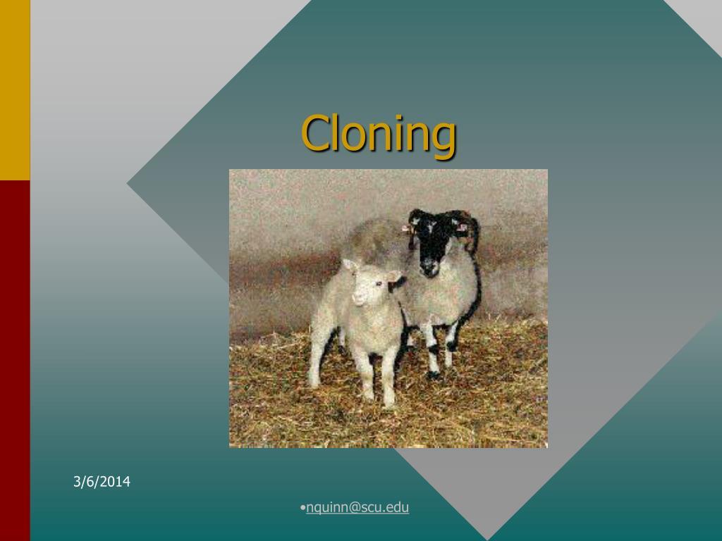 cloning l.