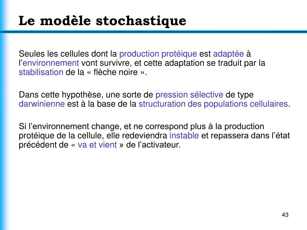 Le modèle stochastique