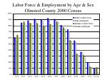 labor force employment by age sex olmsted county 2000 census