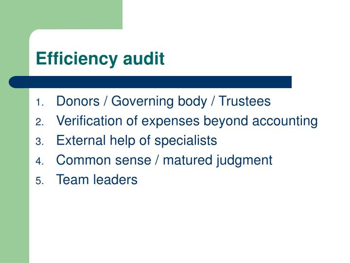 Efficiency audit