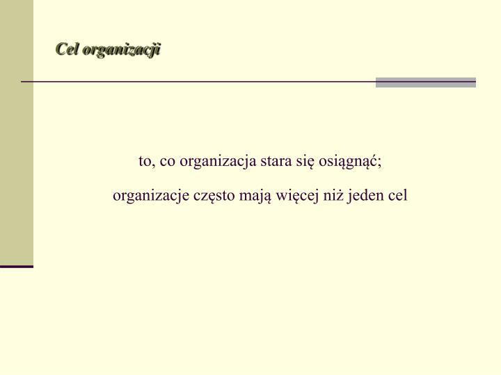 To co organizacja stara si osi gn organizacje cz sto maj wi cej ni jeden cel