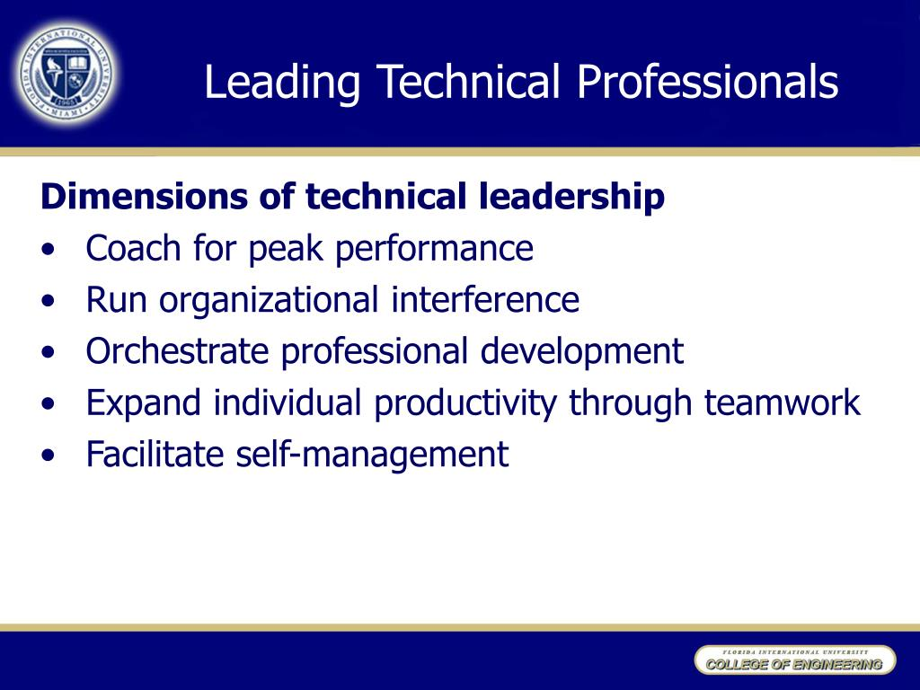 Leading Technical Professionals