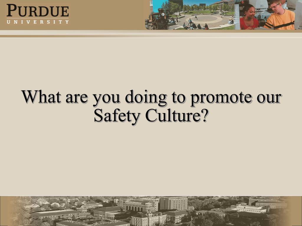 What are you doing to promote our  Safety Culture?