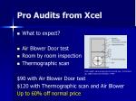 pro audits from xcel