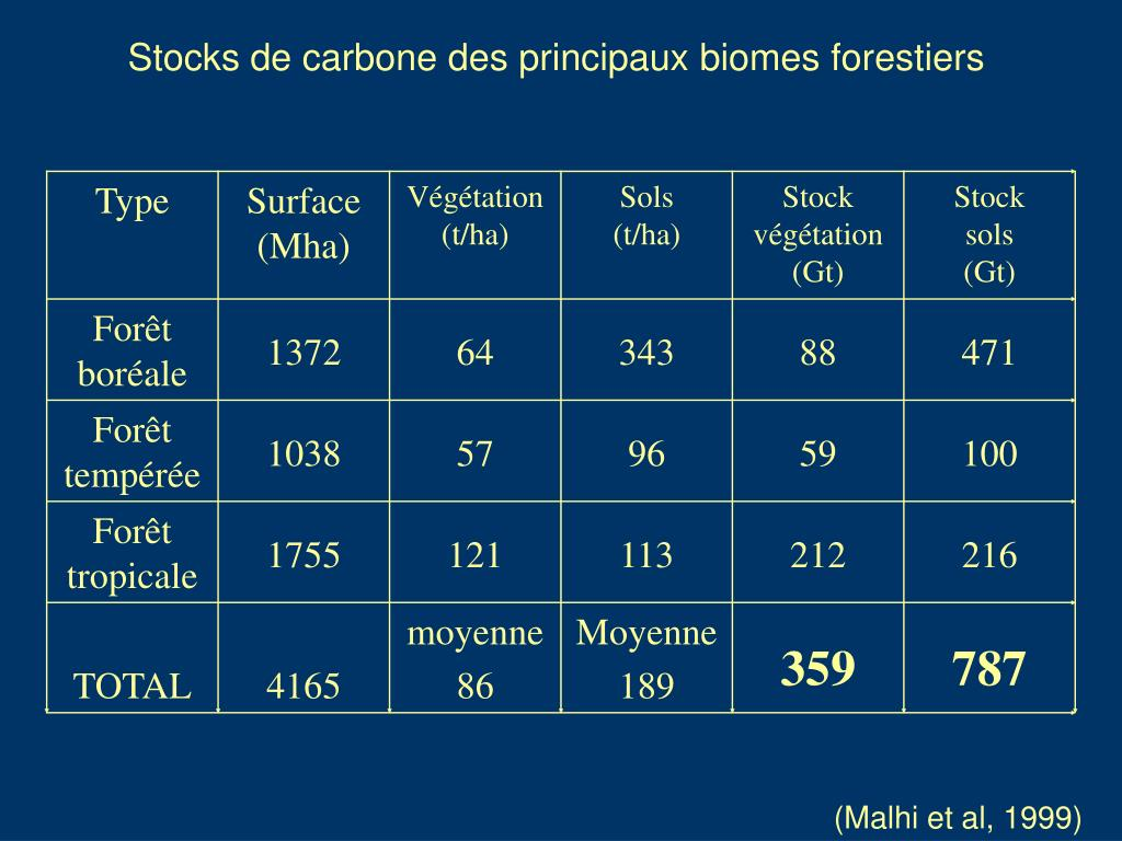 Stocks de carbone des principaux biomes forestiers