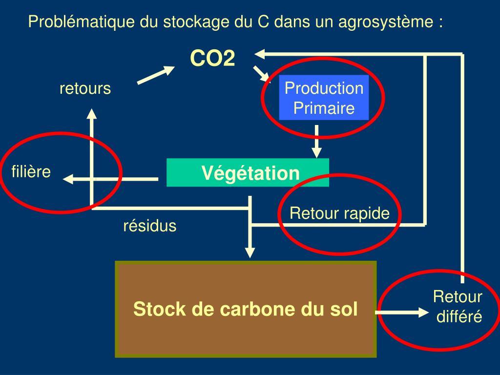 Problématique du stockage du C dans un agrosystème :