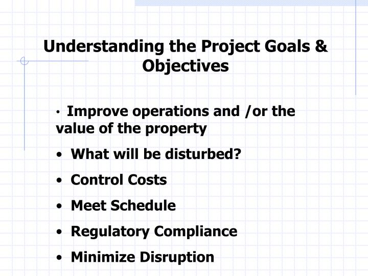 Understanding the Project Goals & Objectives