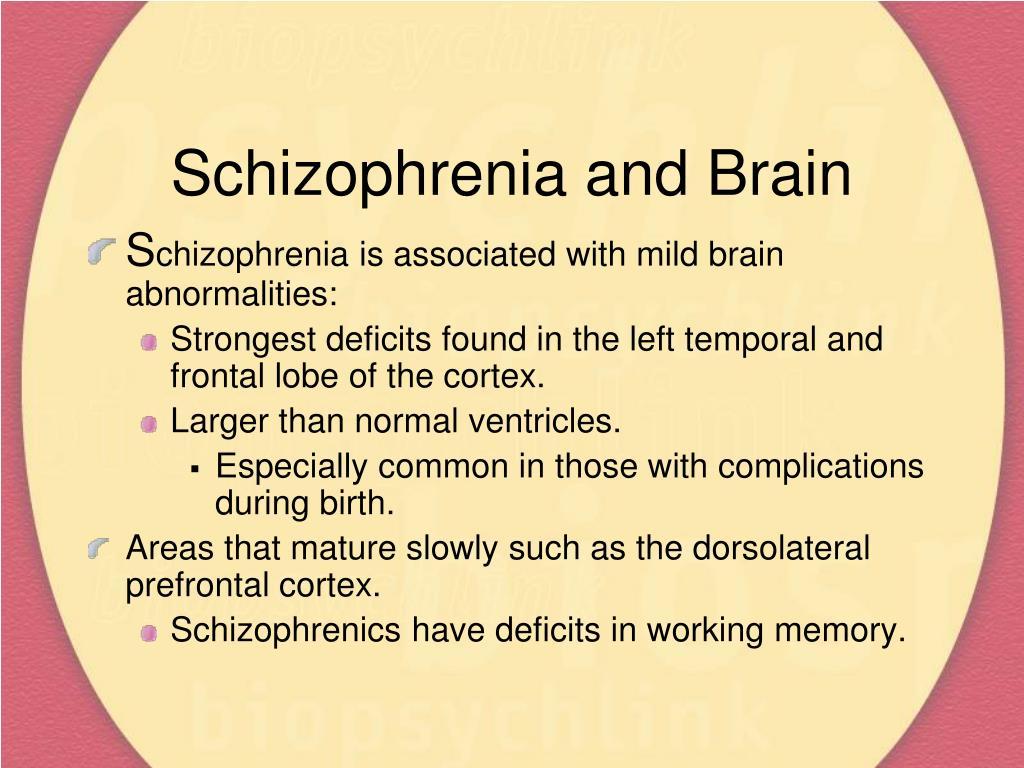 Schizophrenia and Brain