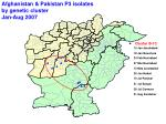 afghanistan pakistan p3 isolates by genetic cluster jan aug 2007