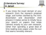 literature survey in detail