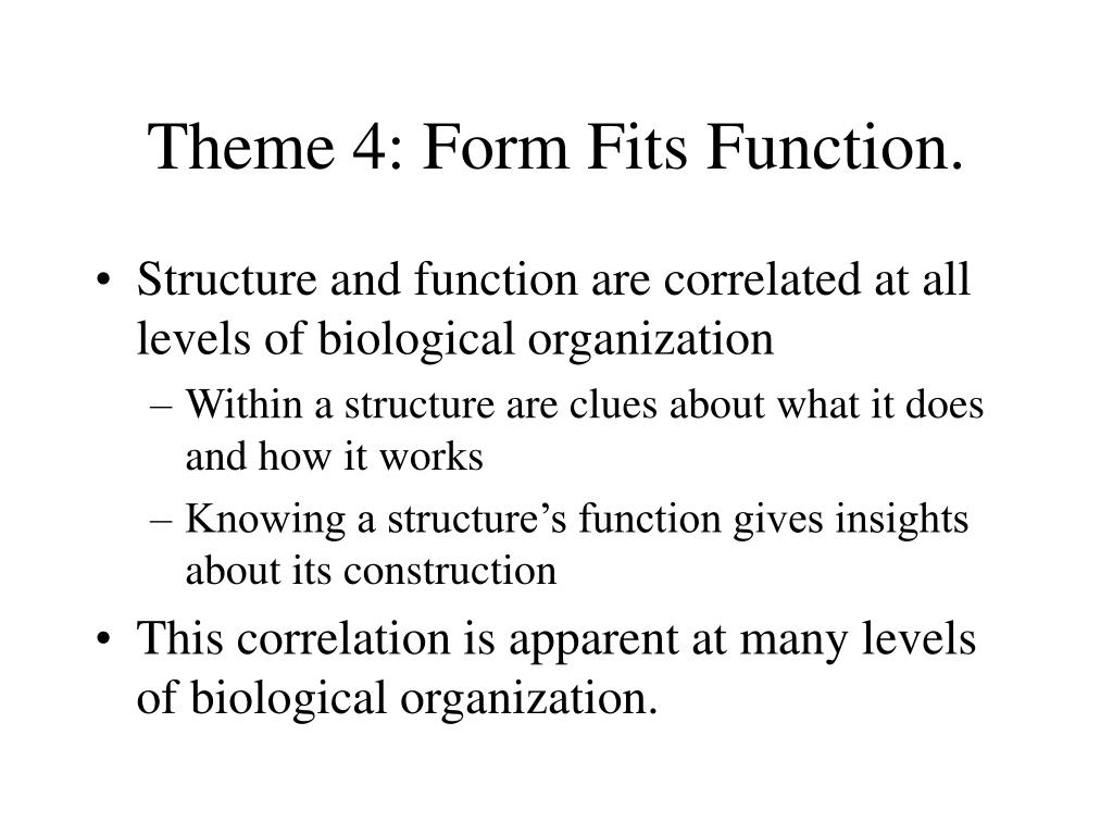 Theme 4: Form Fits Function.