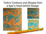 yodo s contours and shapes from a tiger s head behind foliage