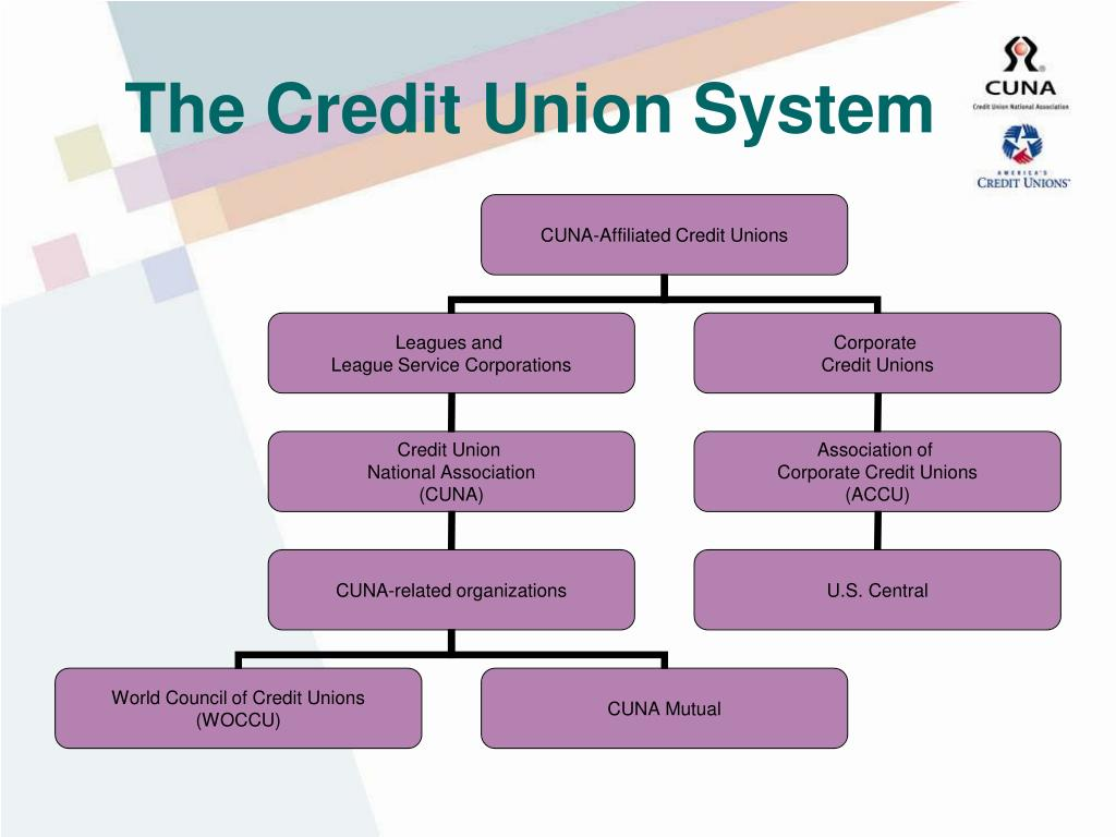 The Credit Union System