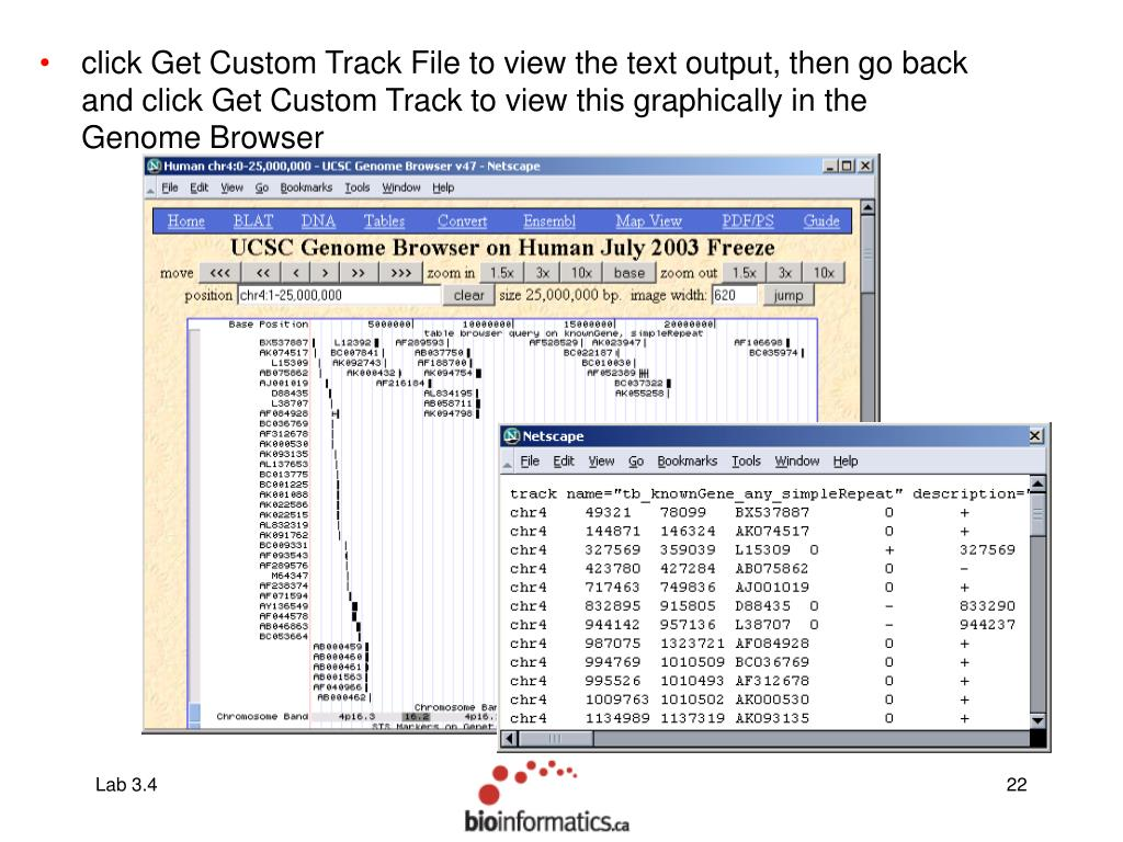 click Get Custom Track File to view the text output, then go back and click Get Custom Track to view this graphically in the Genome Browser