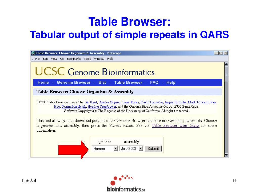 Table Browser: