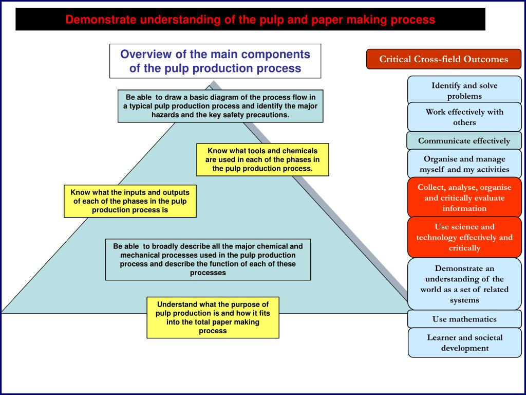 Overview of the main components of the pulp production process