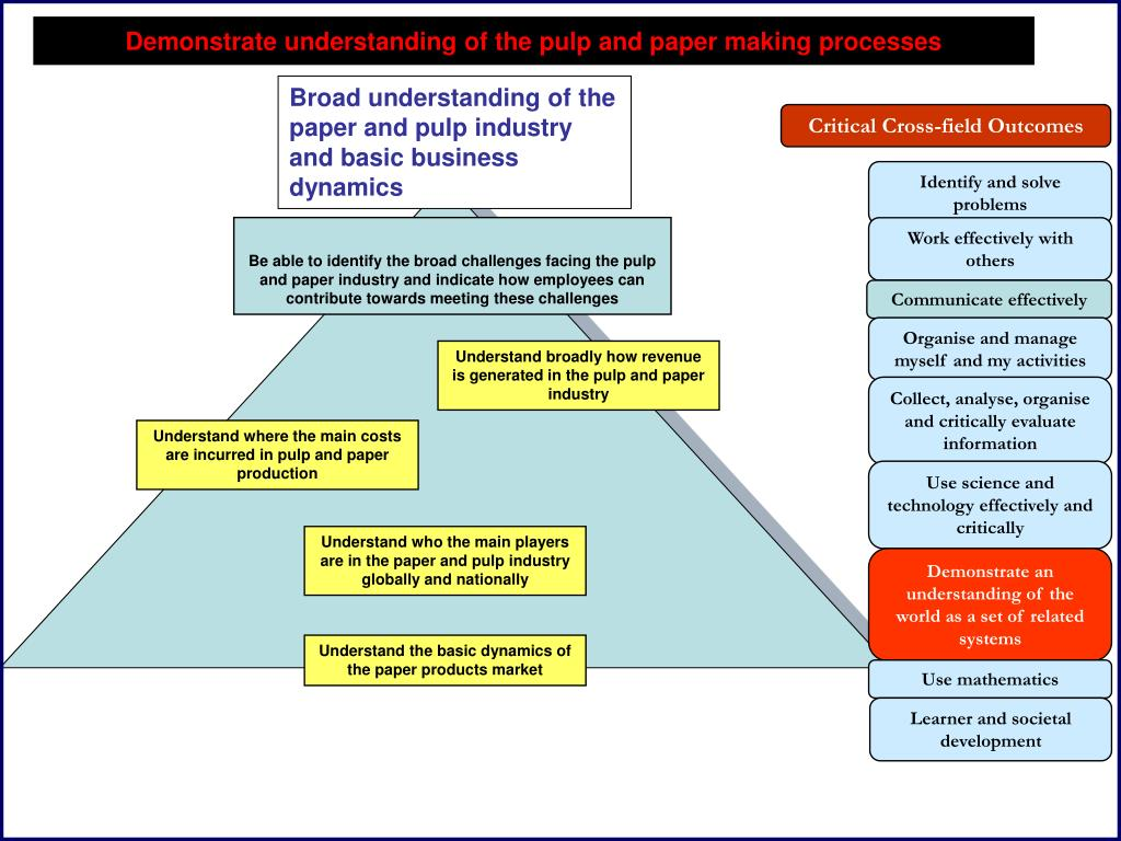 Broad understanding of the paper and pulp industry and basic business dynamics