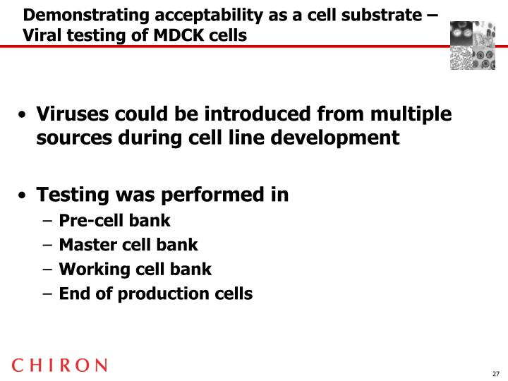 Demonstrating acceptability as a cell substrate –