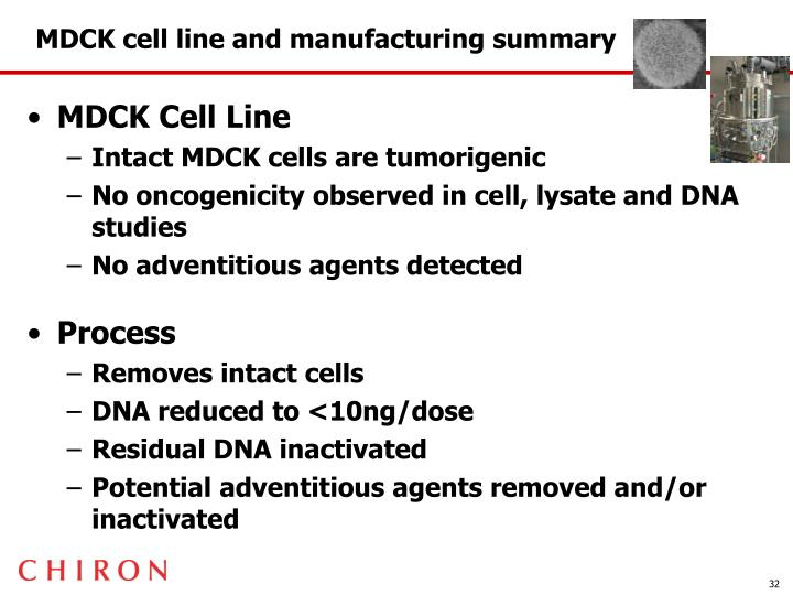 MDCK cell line and manufacturing summary