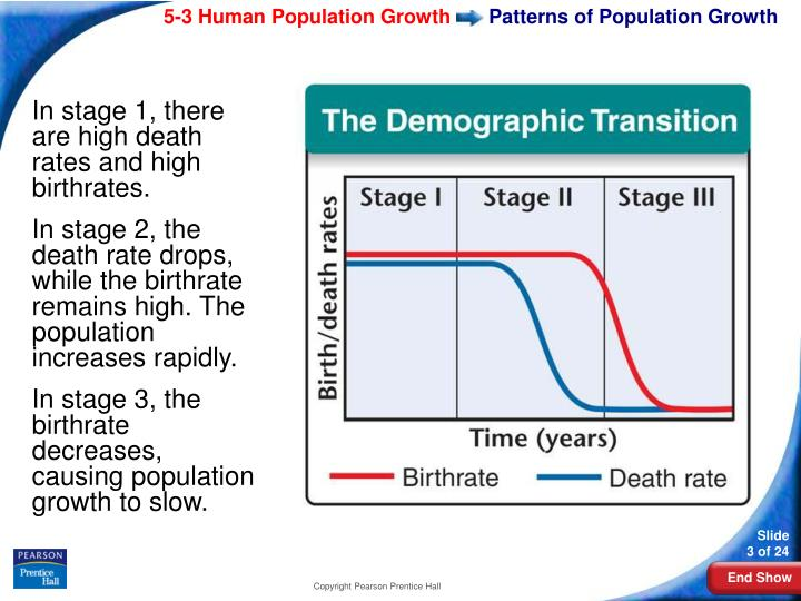 Patterns of population growth3