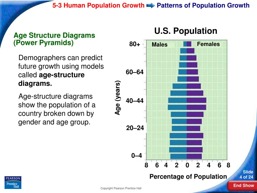 Patterns of Population Growth