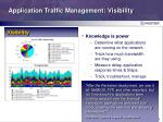 application traffic management visibility