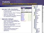 visibility advanced application intelligence classification