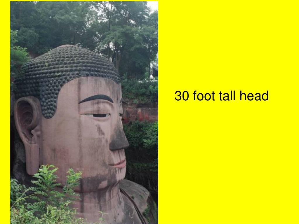 30 foot tall head
