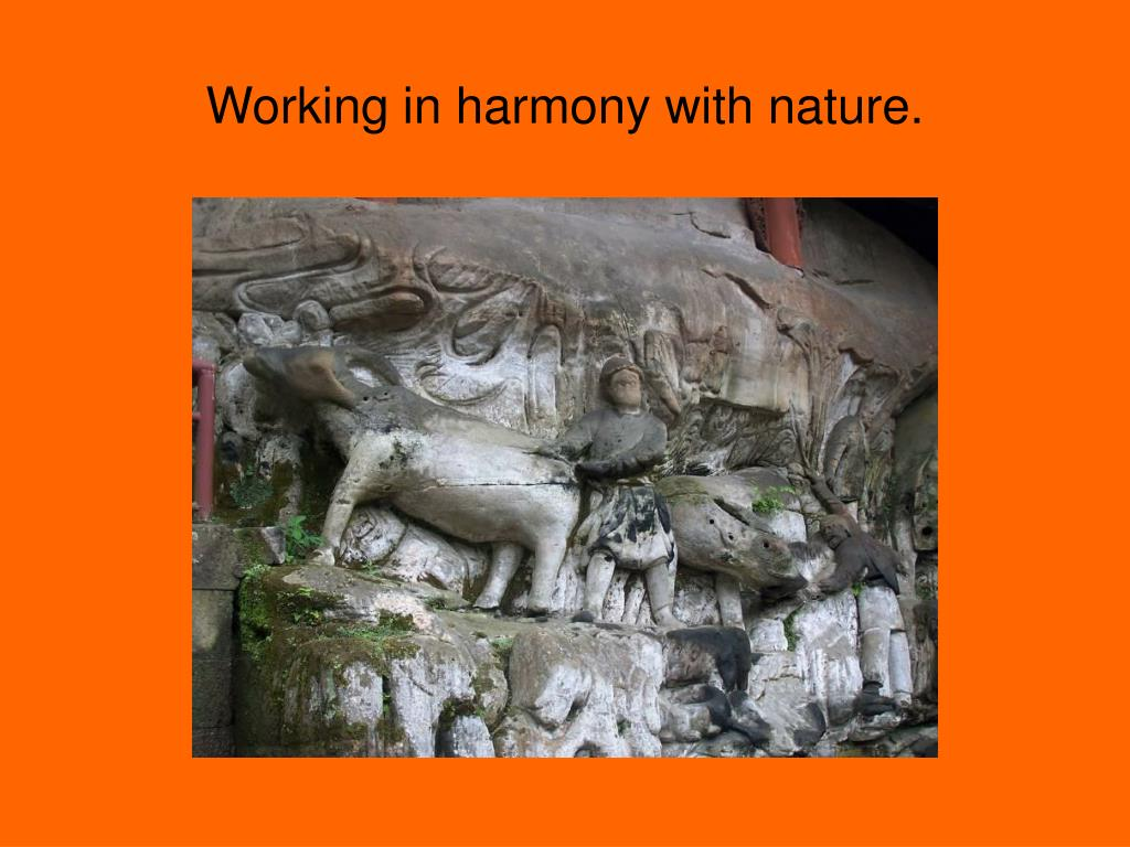 Working in harmony with nature.