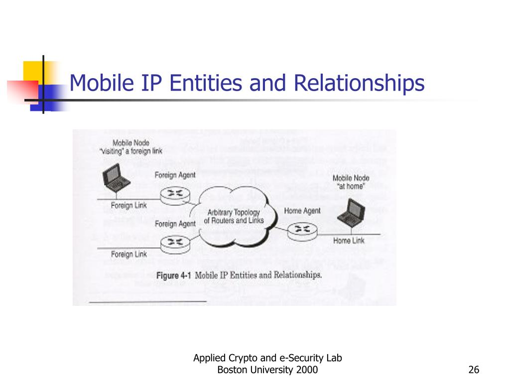 Mobile IP Entities and Relationships