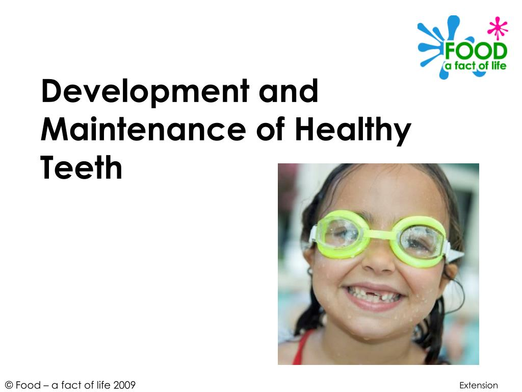 development and maintenance of healthy teeth