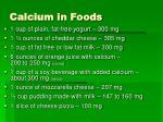 calcium in foods