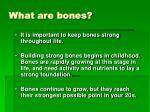 what are bones4