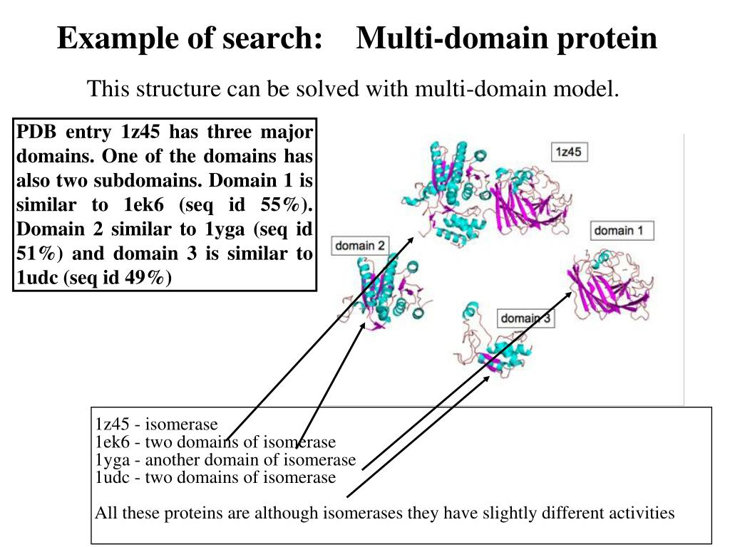 Example of search:    Multi-domain protein