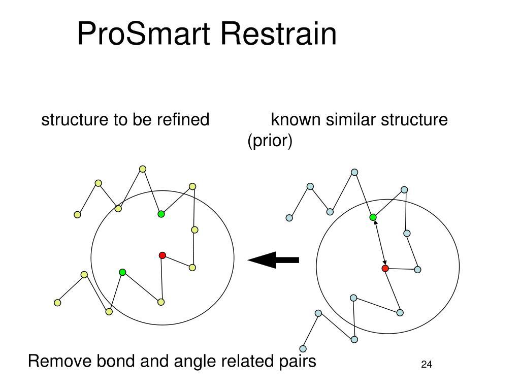 ProSmart Restrain