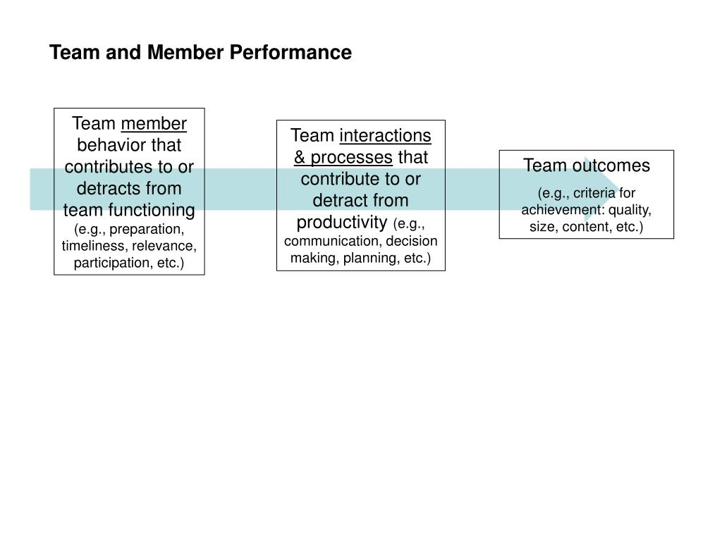 Team and Member Performance