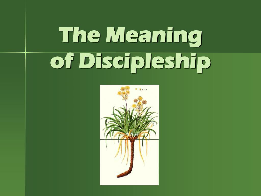 the meaning of discipleship l.