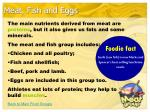 meat fish and eggs