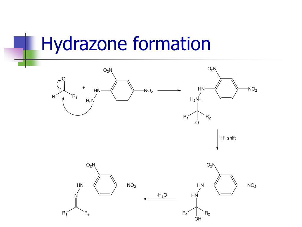 Hydrazone formation