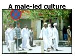 a male led culture
