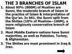 the 3 branches of islam