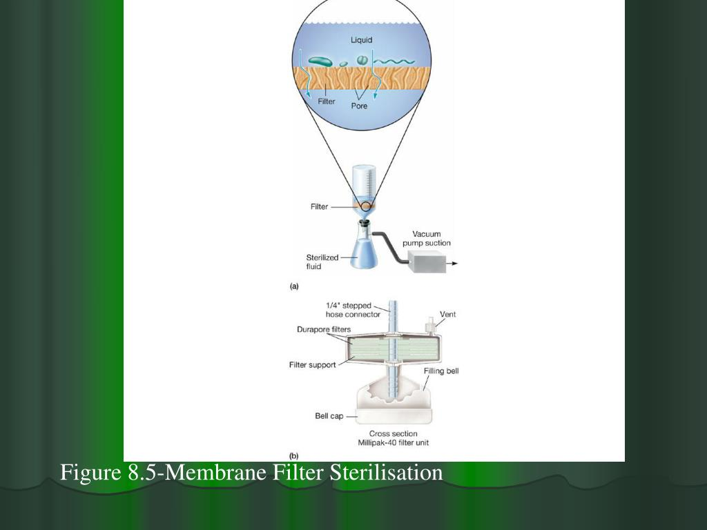Figure 8.5-Membrane Filter Sterilisation