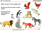 unit 3a animal diets