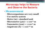 microscopy helps to measure and observe the bacteria