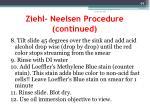 ziehl neelsen procedure continued