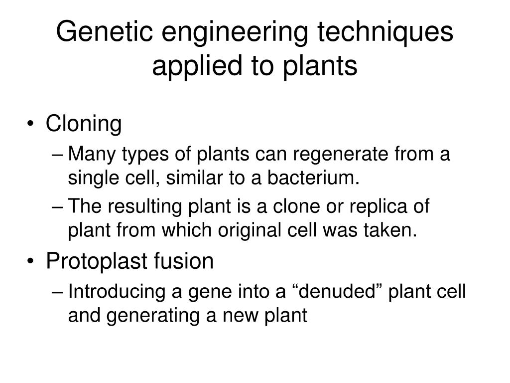 Genetic engineering techniques applied to plants