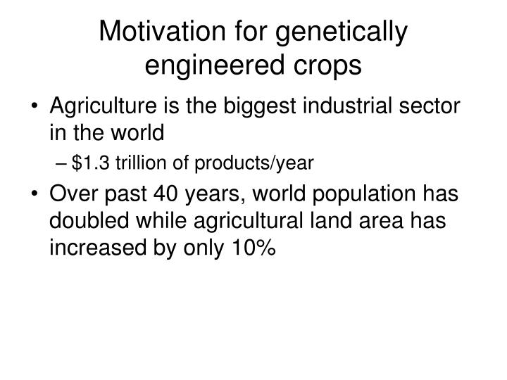 Motivation for genetically engineered crops