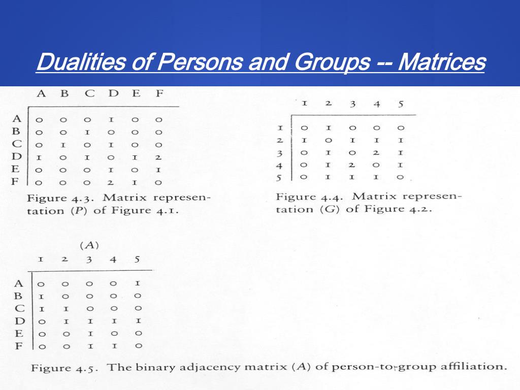 Dualities of Persons and Groups -- Matrices