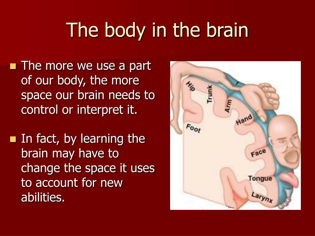 The body in the brain
