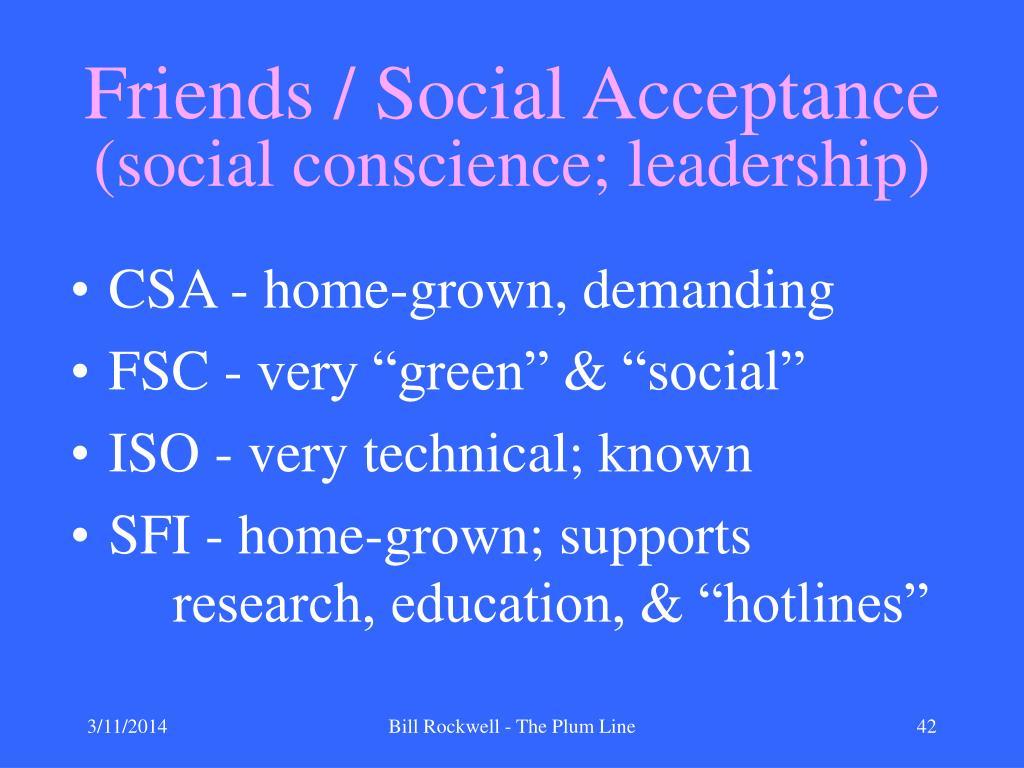 Friends / Social Acceptance